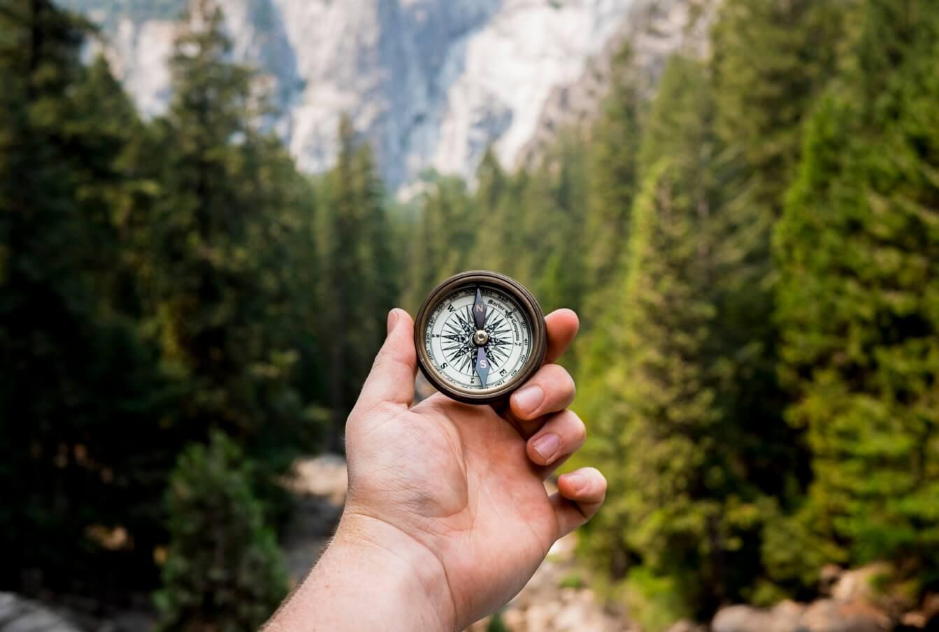 Un'immagine ravvicinata di una mano che tiene un compasso di fronte ad un campo di alberi